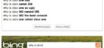 Zajímavý rozdíl mezi Bing a Google