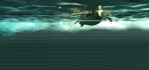 penguin-nad-html-kodem